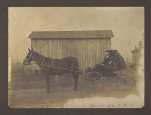 Alvin Huff with carriage